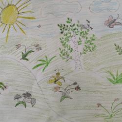 Лето моей мечты Абилова Дарина 5 лет